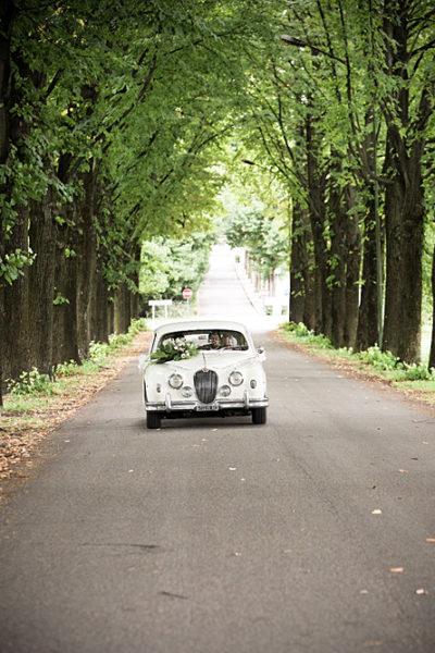 vicenza-matrimonio-auto-jaguar-sposi-viale-alberato-montecchio